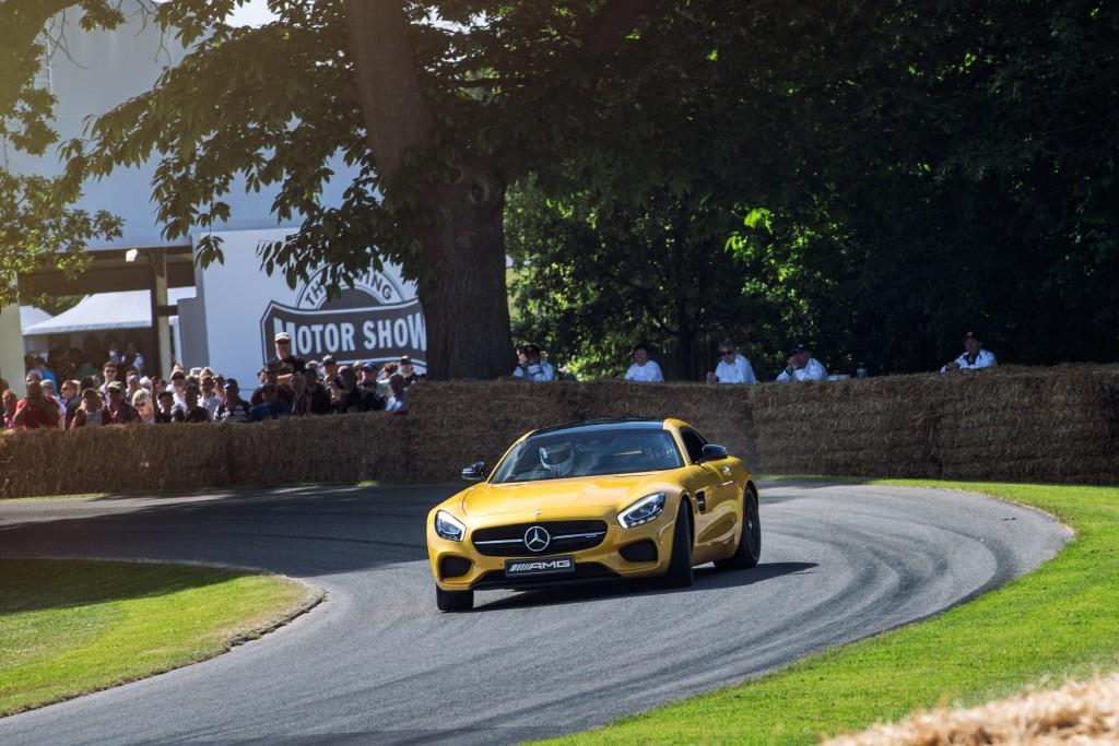 RP - Mercedes Benz Goodwood Festival of Speed-3