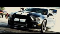 Mustang Week 2015 Recap