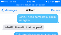 DUI Stupidity: The Raccoon Made Me Crash!