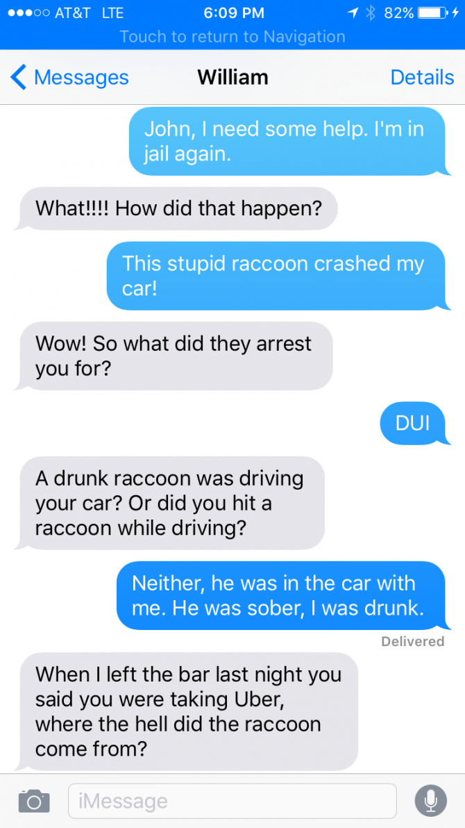 DUI Stupidity: The Raccoon Made Me Crash!