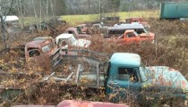 Gates Salvage: Auto Yard Or Murder Yard?